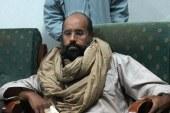 卡扎菲兒子特赦復出 竟有八成民意支持