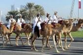 中東秩序重建中的卡塔爾插曲
