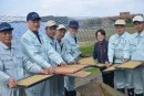 種水稻也需工匠精神